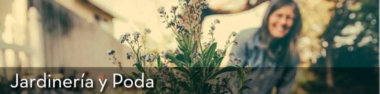 10_jardineria-y-poda_llcenter_oficios_capacitacion_chile